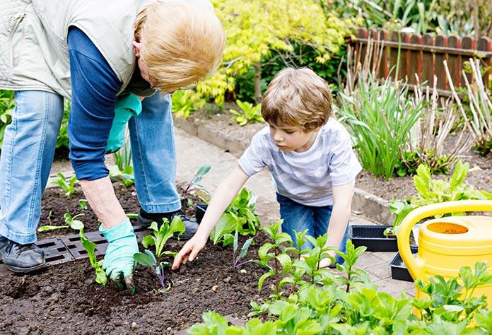 Spomladanska vrtna opravila